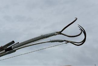 ウニ漁の漁具「カニ」