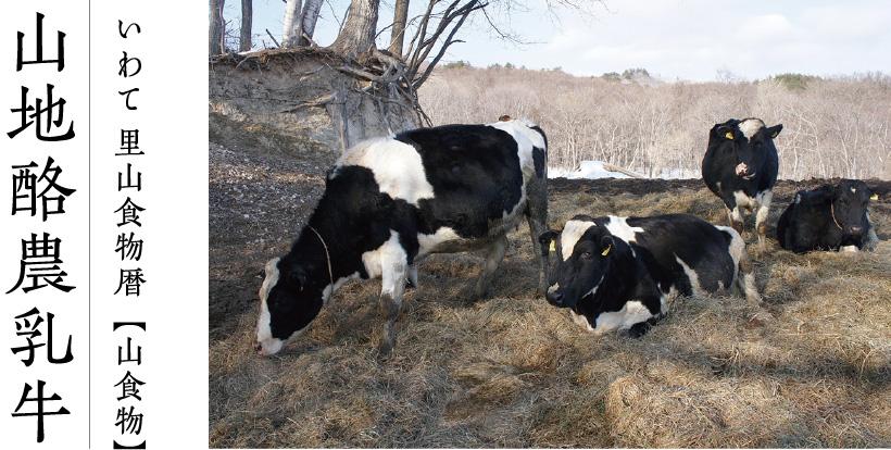 いわて 里山食物暦【山食物】山地酪農乳牛